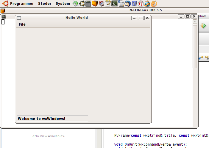 Netbeans Success.png